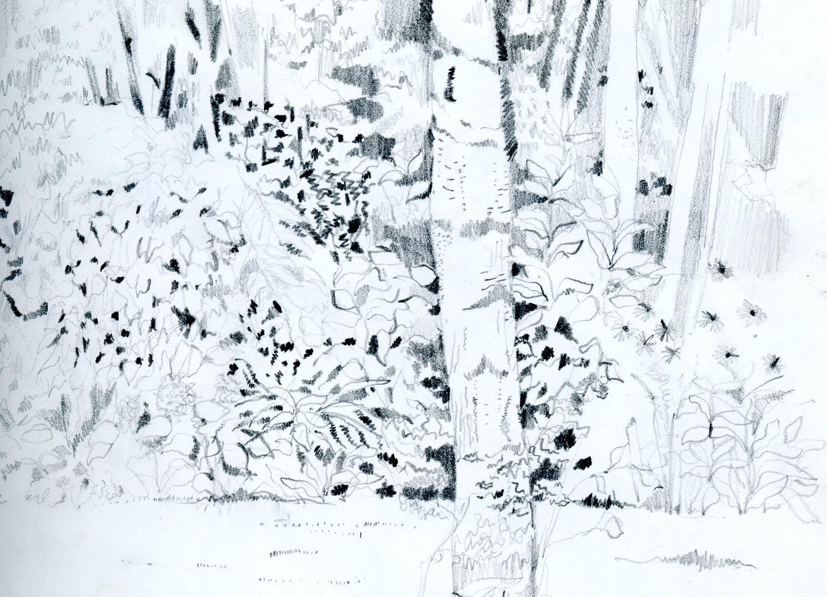 french-garden-1982001_edited-2